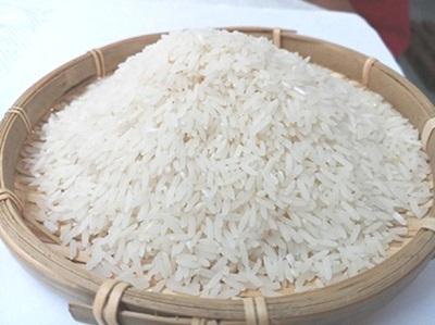 Gạo Nàng Hoa Sữa