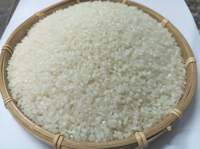 Gạo Nhật Japonica